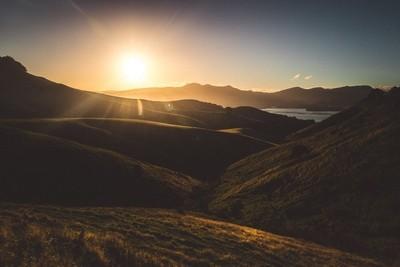 Otago fields of gold