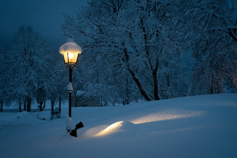 This warm light in the cold blue snowy night makes me think of Narnia