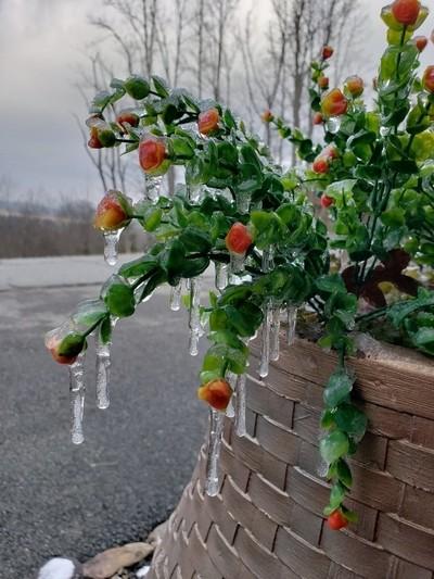 Cold Georgia Rain