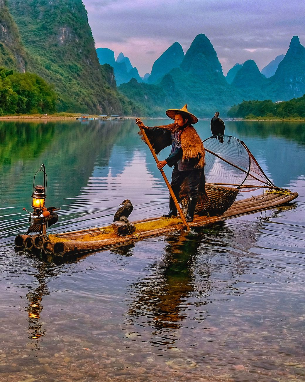 Cormorant fisher at the Li river
