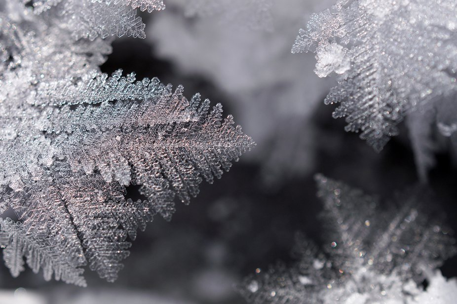 this is detail of frozen crystals