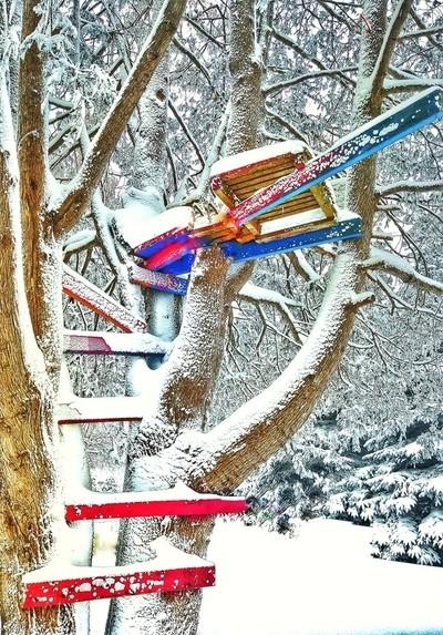 Frozen treehouses