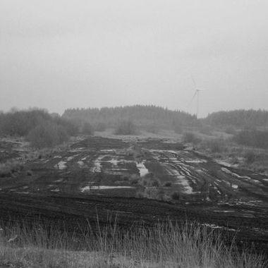 Winter on the Bog of Allen