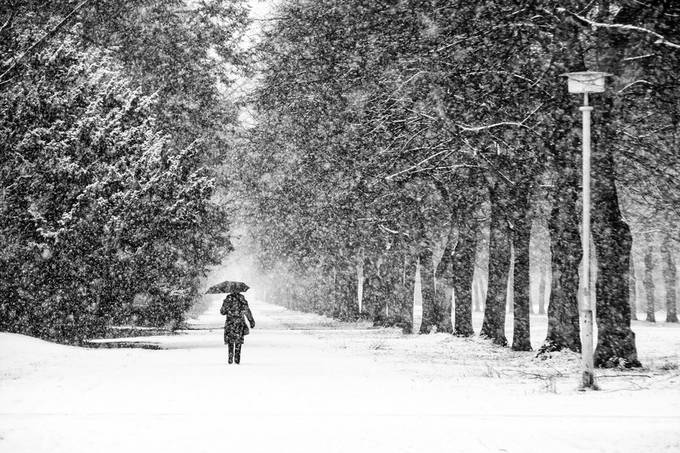 driving snow by frankseltmann - We Love The Winter Photo Contest
