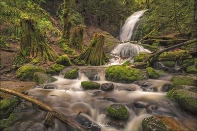 Waterfall on Cougar Mountain - Bellevue WA