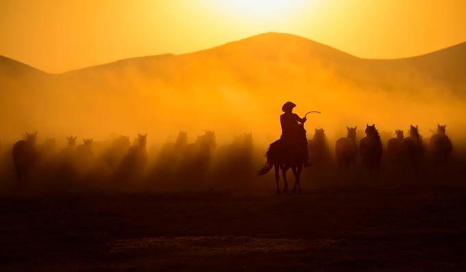 Chasing the Jades by sarilaci12 - Image Of The Month Photo Contest Vol 42