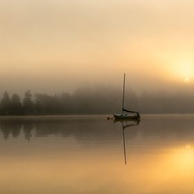 A wonderful foggy morning as the sun was rising...so calm, not a peep from anywhere.