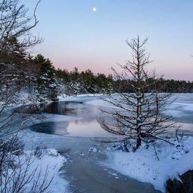 I love winter sunsets.  The pastel colours, snow and ice and a little silvery moon...what more could you ask for?
