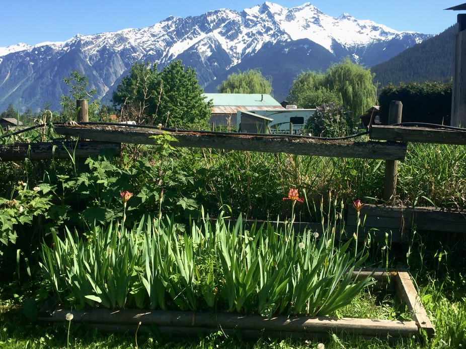 Mount Currie / spring time