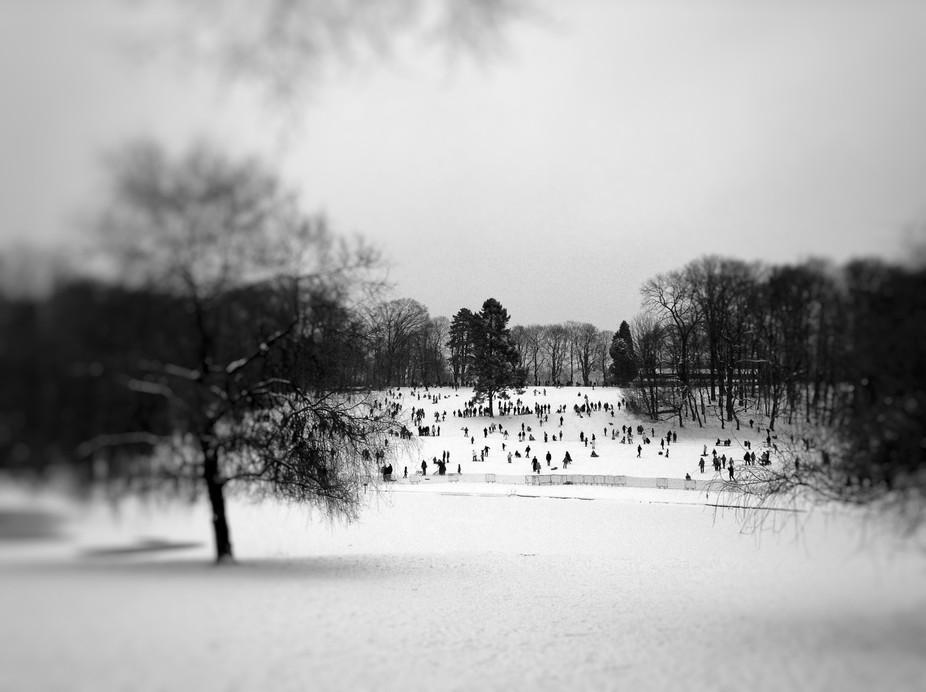 a.k.a. as Winter Landscape Without Bird Trap :)  Enjoy!