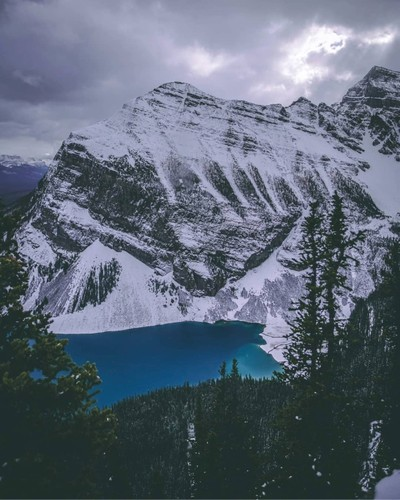 Veiw of Lake Louise From the top of the big bee hive trail