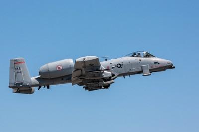 A-10 Warthog                                                                    (20070624-OM7H6915)