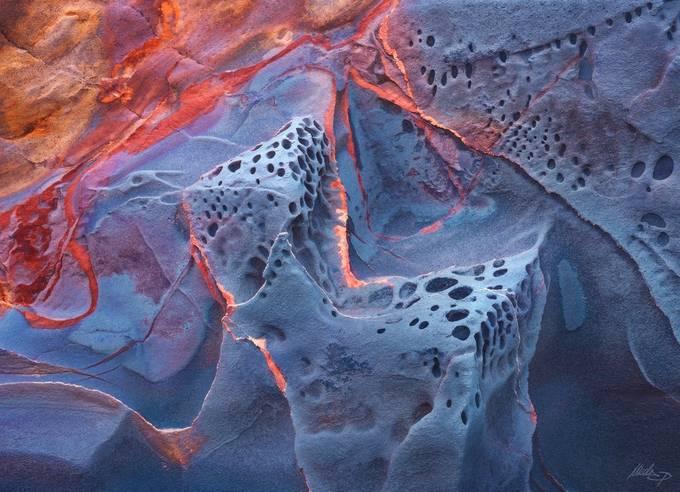 Abiogenesis by NicolaPirondini - Colorful Macro Photo Contest