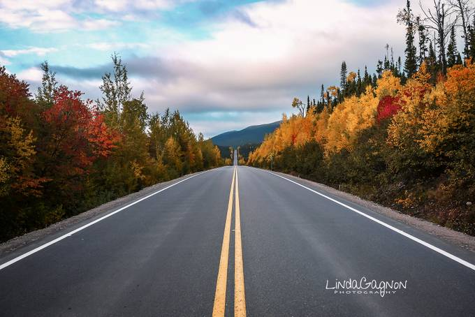 Straight Ahead on the 389 by lindagagnon - Straight Roads Photo Contest