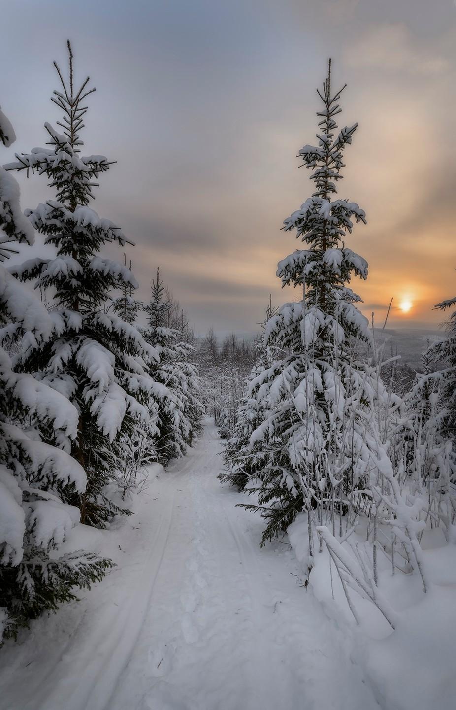 winter road by geertweggen - Straight Roads Photo Contest