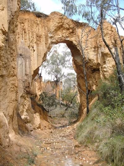Golden Arch.
