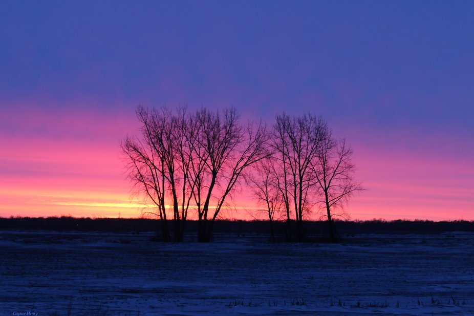 Near Drayton, ND on the way to Canada