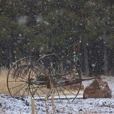Winter Days Vl