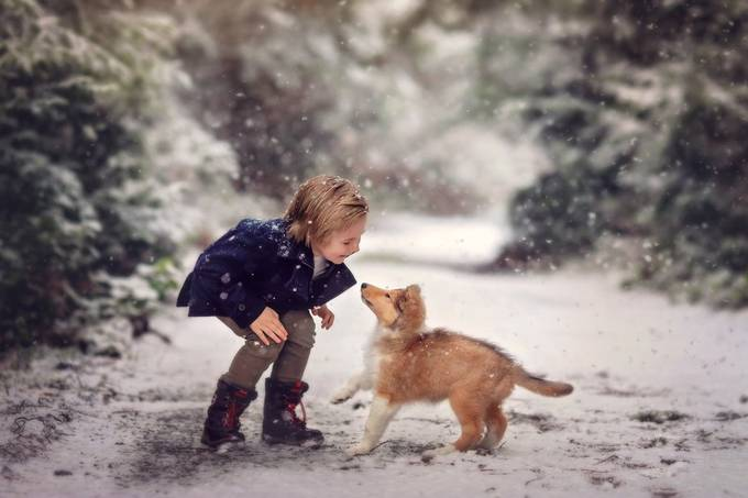 Snow Day  by sarahwolfe_1013 - Social Exposure Photo Contest Vol 21
