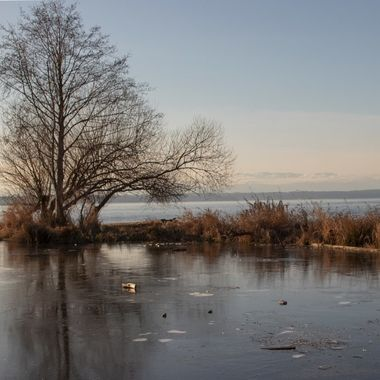 Winter day at Golden Gardens