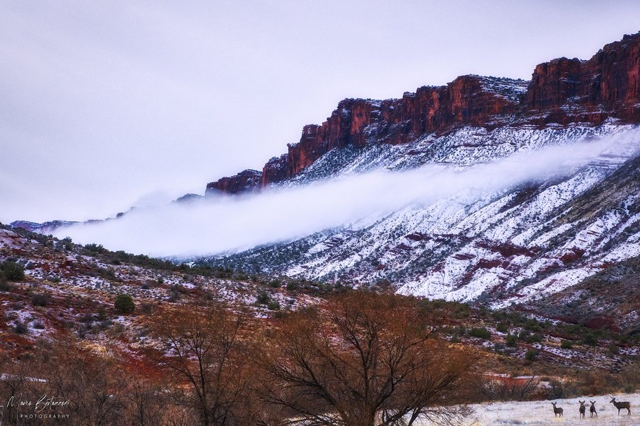 A scenic early morning near Moab, Utah.