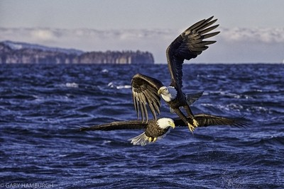_U0U3894 Double Eagle-Edit