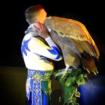 """""""Don't be sad, buddy. Everything's going to be OK"""". The Vulture and the Trainer. Circus, St. Petersburg."""