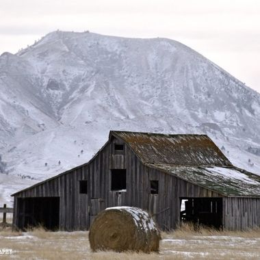 Bear Butte Barn