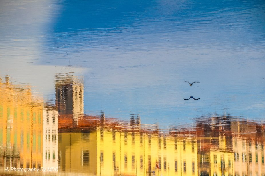 Reflections in Pisa Italy