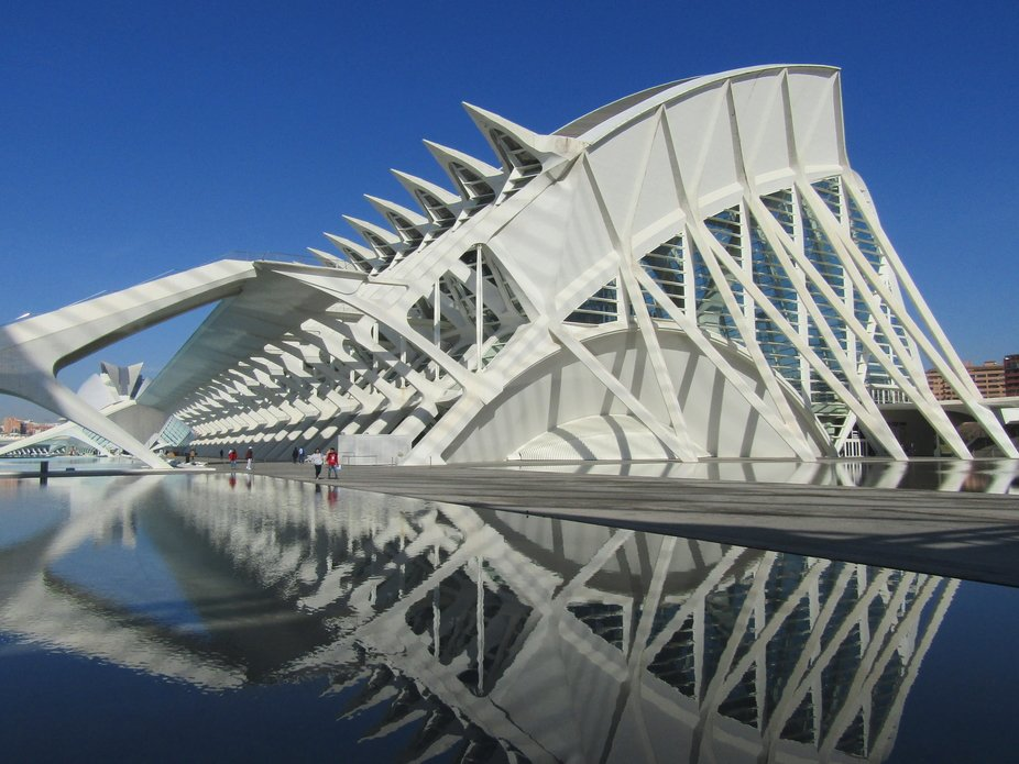 The Art and Science Museum is designed to represent the skeleton of a whale. Not having seen one,...