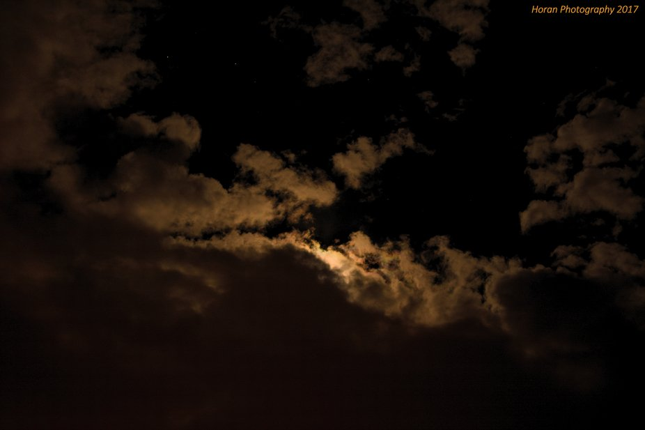 I took advantage of a somewhat warm fall evening with an almost full moon peaking in through the ...