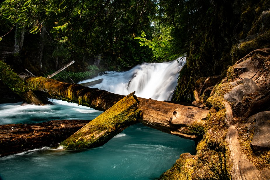 Took a trip out to Portland, OR last summer to visit some friends and do some exploring. My one b...