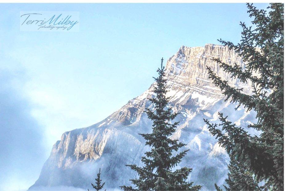 Morning fog in Banff, Alberta.