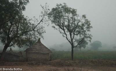 Landscape rural India-201900413