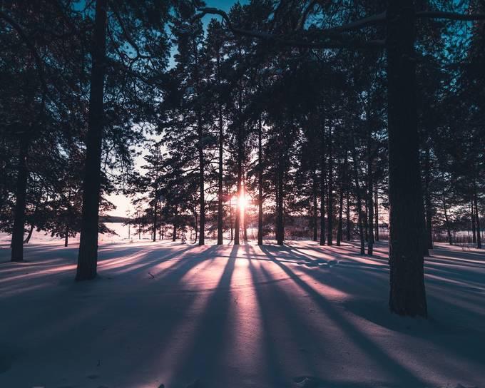 Pink light by turohaapamaki - We Love The Winter Photo Contest