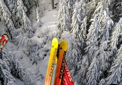 above the trees on skis!