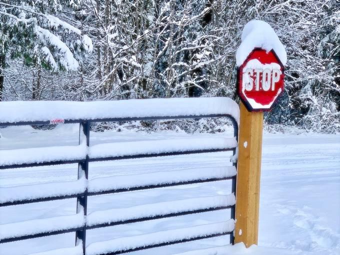 Stop really?  Nah!