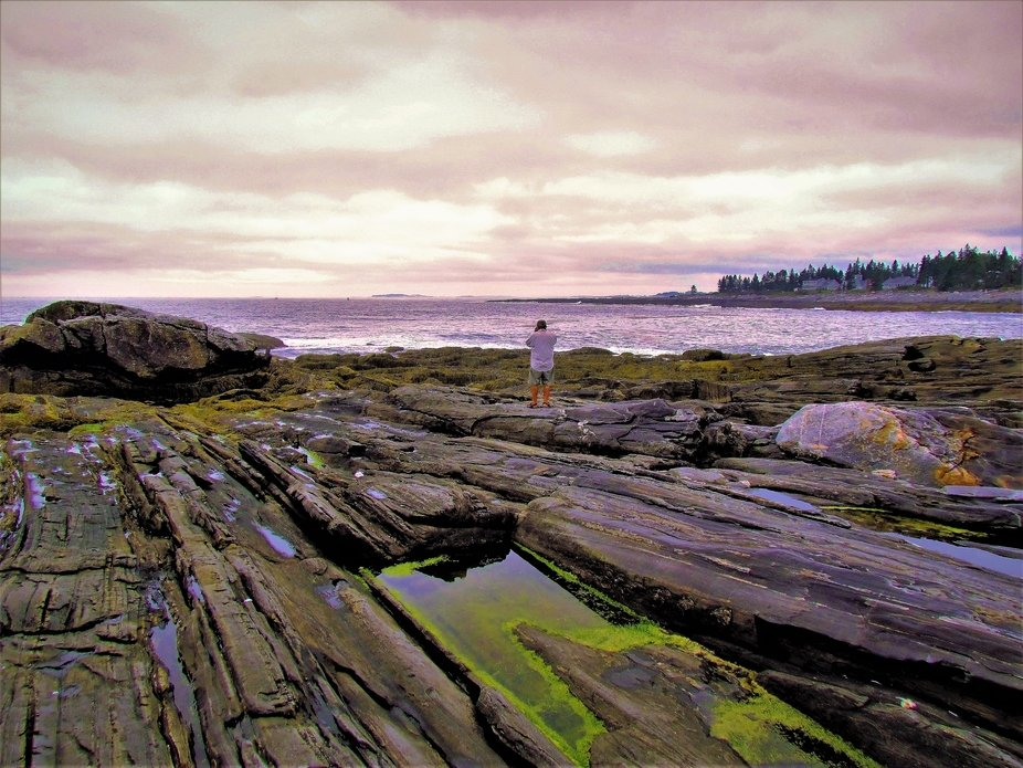 Taken along the south central coast of Maine.