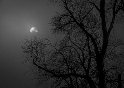 Sunrise, Gloom, 2019