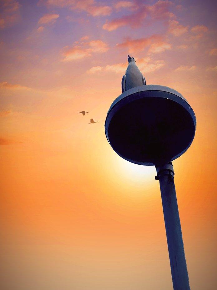 Heute ein schöner Sonnenuntergang mit allem drum und dran