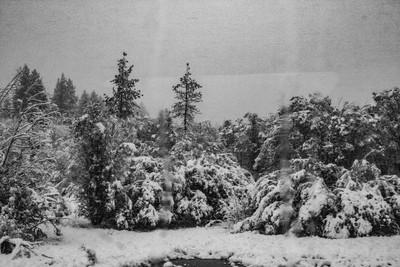 Lake Tahoe Blizzard 1