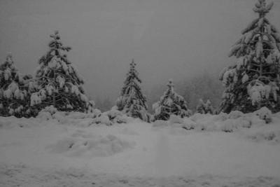 Lake Tahoe Blizzard 2