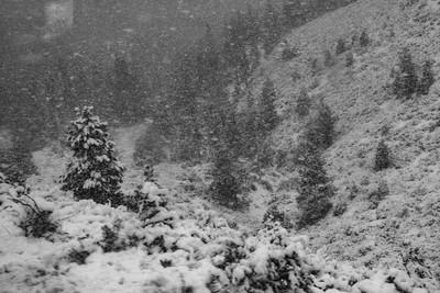 Lake Tahoe Blizzard 4