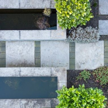 My garden from above
