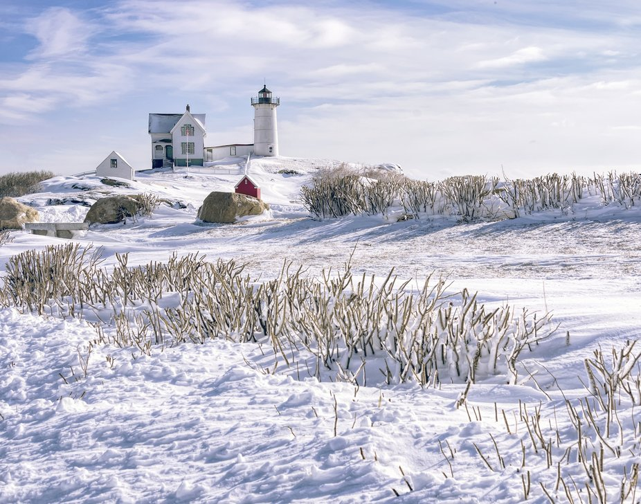 Beach roses in fornt of the Cape Neddick Light aka the Nubble after a snow storm.