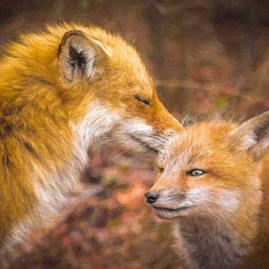 Mommy Fox Kisses