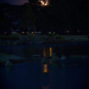 February Full Moon at Craig Ranch park.