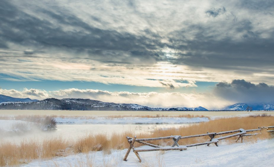 Warm spring where trumpeter swans winter in Wyoming.
