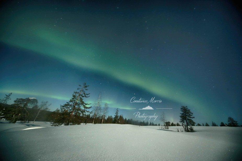 northan lights 1 tag