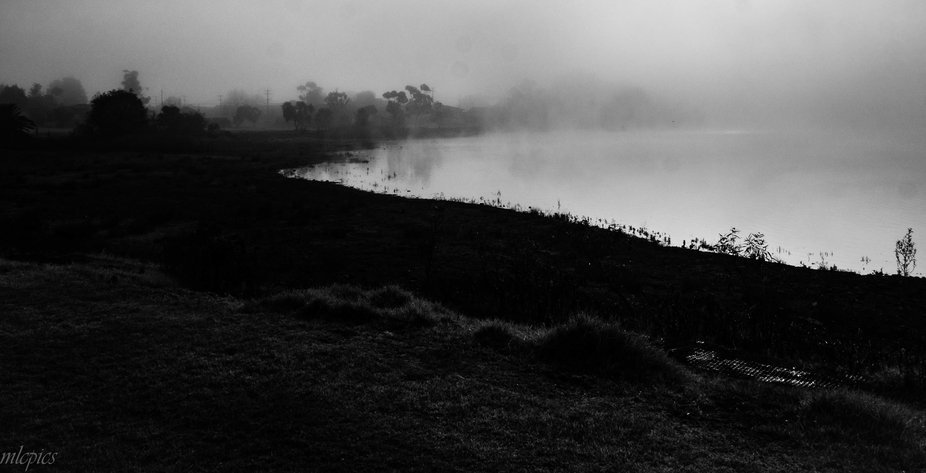 I took this shot early morning, and feel that editing it this way gave it more depth.